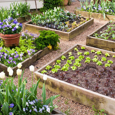 Những ý tưởng làm vườn có 1-0-2